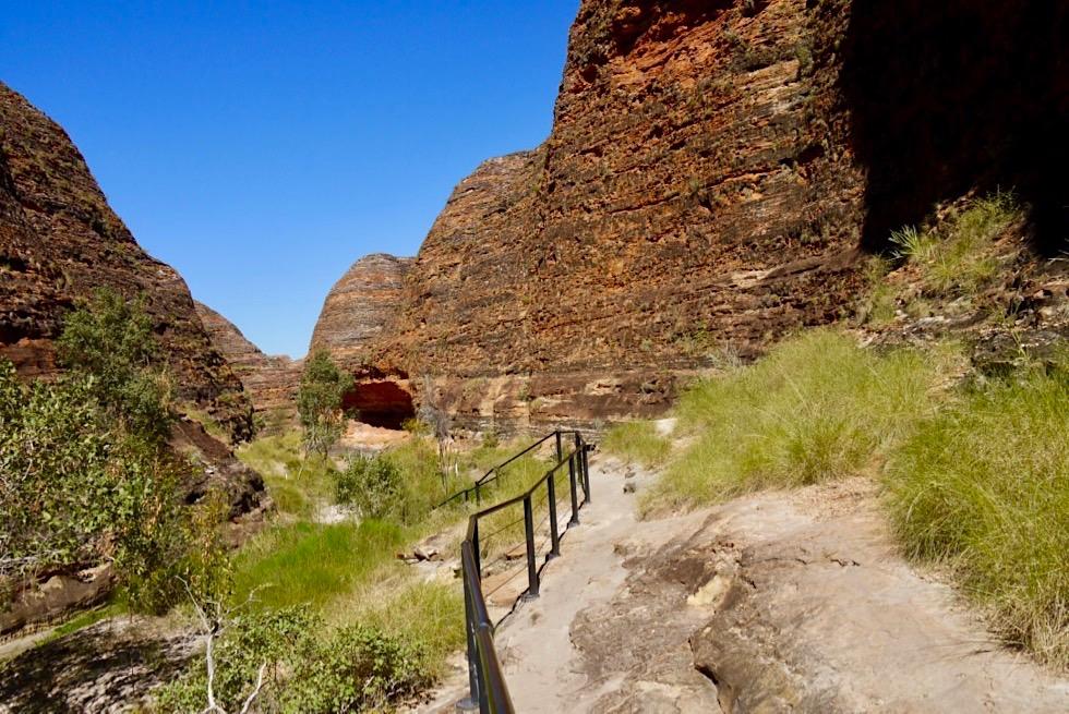 Bungle Bungle Range & Purnululu National Park - Herrliche Ausblicke auf dem Cathedral Gorge Walk - Kimberley - Western Australia