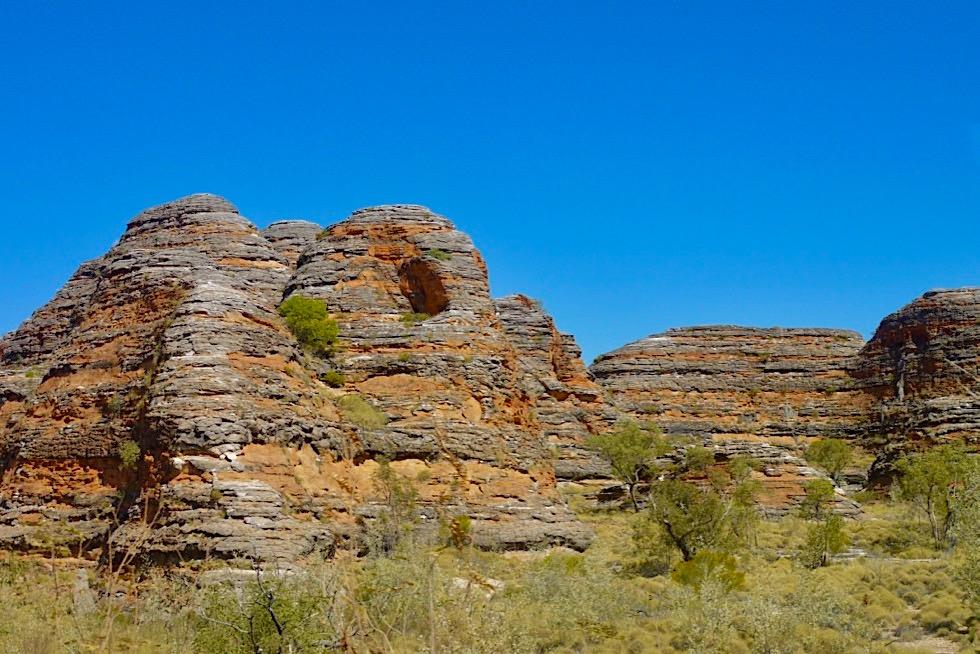 Bungle Bungle - Kegelkarst-Landschaft - Purnululu National Park - Kimberley, Western Australia