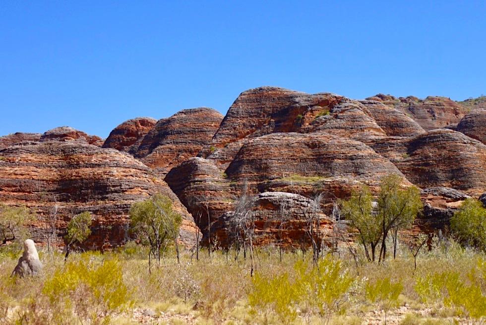 Bungle Bungle National Park - The Domes: wunderschöne bunte Sandsteinkuppeln - Kimberley, Western Australia
