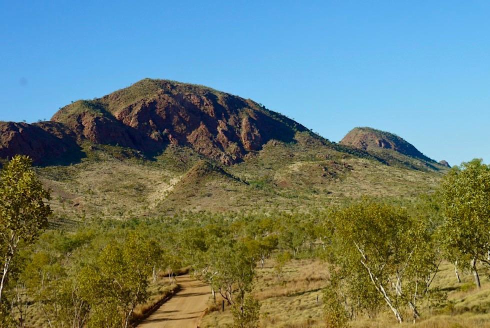 Bungle Bungle National Park - Piste & Landschaft auf dem Weg zum Visitor Centre - Kimberley - Western Australia