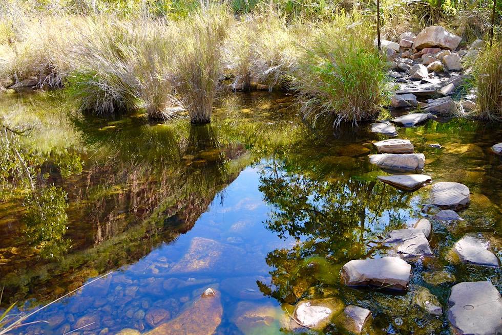 Emma Gorge Walk - Bachüberquerung auf Steinen - El Questro - Kimberley - Western Australia