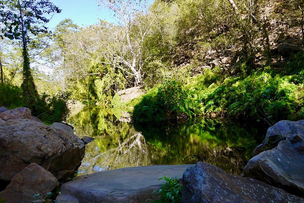 Emma Gorge Trail - Schattiger Fern Pool - El Questro - Kimberley - Western Australia