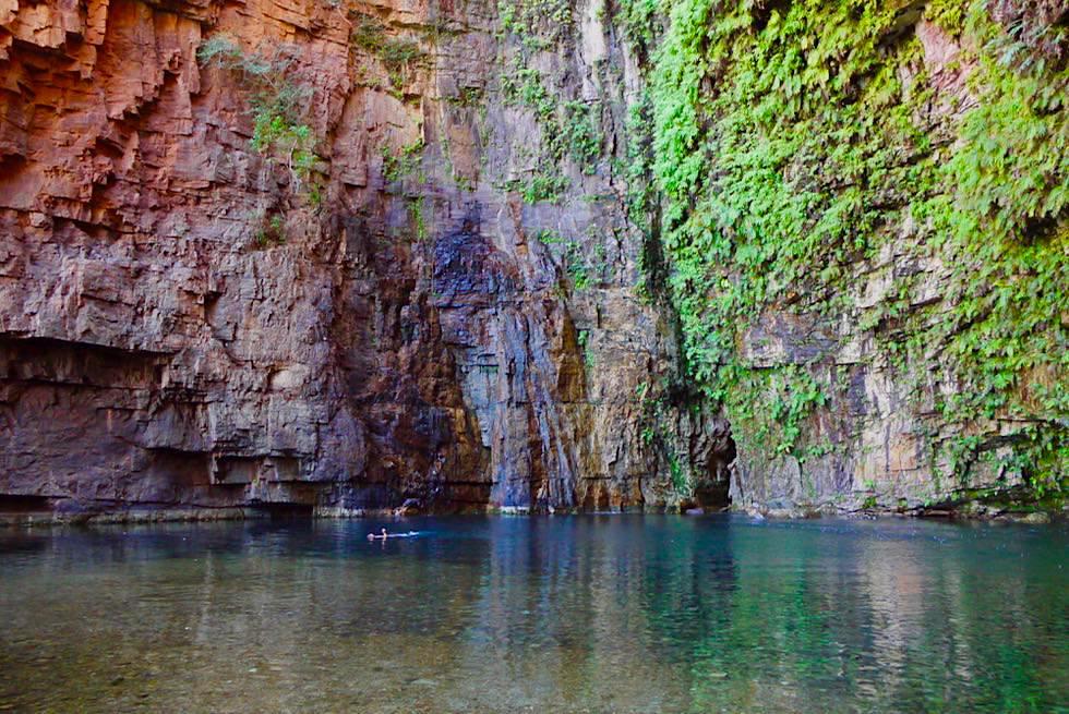 Highlight Kimberley: Emma Gorge Pool - Schwimmen im kühlen Pool - Western Australia