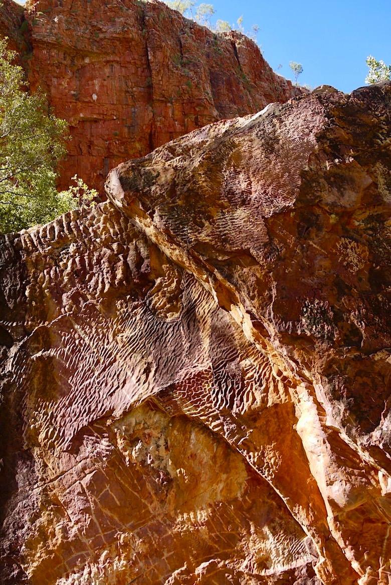 Emma Gorge Trail - Ripple Rock ausgewaschen über Jahrhunderte - El Questro - Kimberley - Western Australia