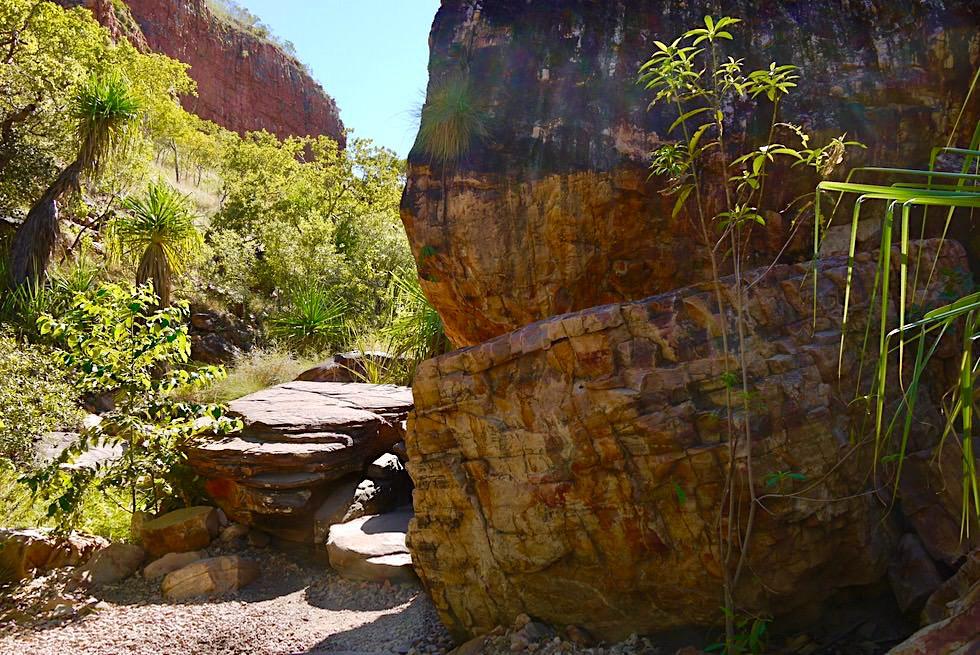 Emma Gorge Trail - Über Stock und Stein führt der steinige, aber lohnende Weg - Kimberley - Western Australia