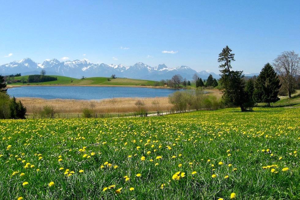 Forggensee bei Füssen - Allgäu - Bayern