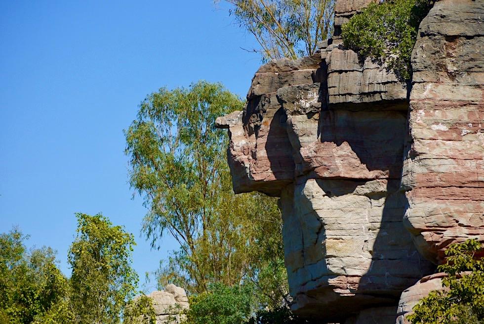Geiki Gorge - Von den Naturkräften modelliert: Lustiges Felsen-Gesicht - Fitzroy River - Kimberley, Western Australia
