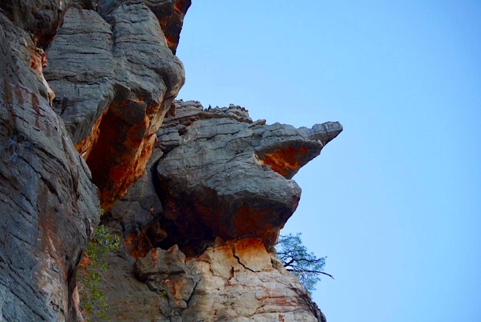 Geikie Gorge Bootstour - bizarre Felsformationen - Kimberley - Western Australia