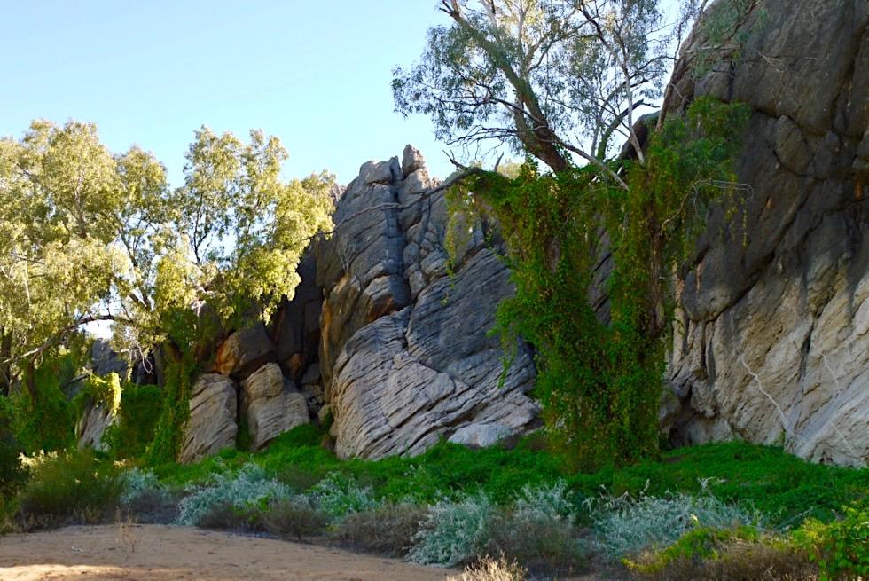 Geikie Gorge Reef Walk - Wanderung entlang der Klippen auf der Westseite des Fitzroy River - Kimberley - Western Australia