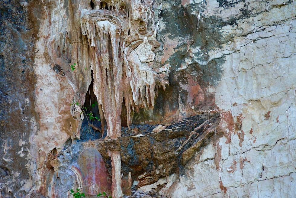 Geikie Gorge - Tropfsteingebilde an Außenseite der Felswand - Fitzroy River - Kimberley - Western Australia
