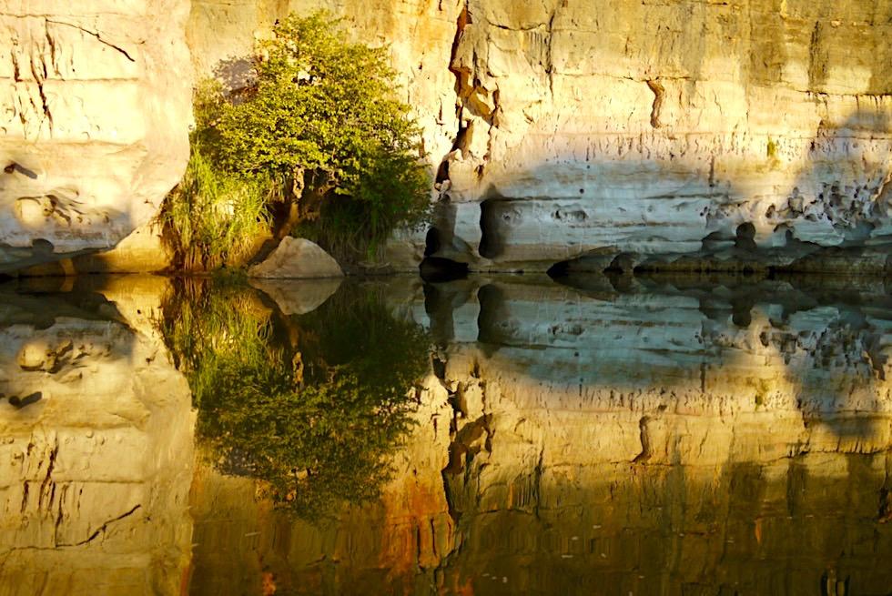 Geikie Gorge - Spiegelungen im letztes Sonnenlicht - Fitzroy River - Kimberley - Western Australia