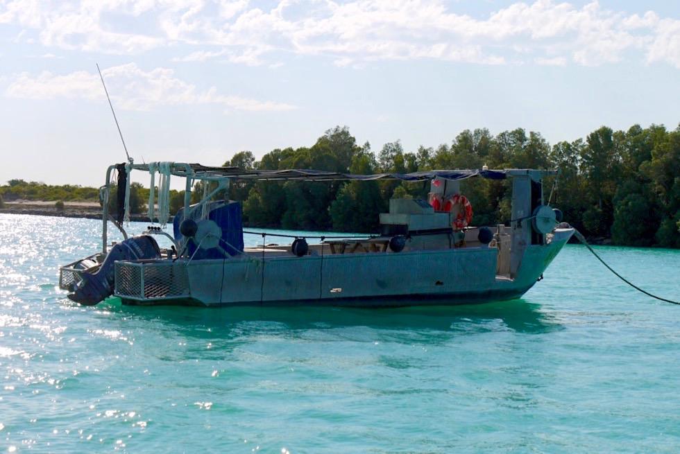 Perlenzucht - Reinigungsboote eingesetzt um Muscheln von Parasiten zu befreien - Kimberley - Western Australia