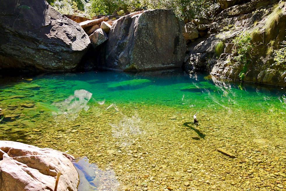 Turquoise Pool - Emma Gorge Wanderung - El Questro - Kimberley - Western Australia