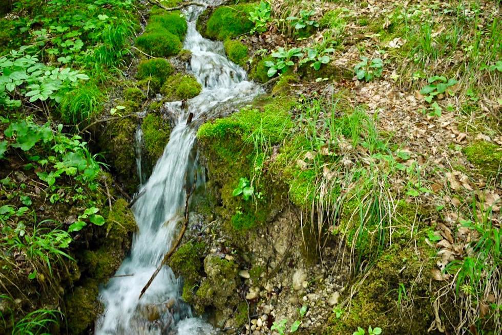Wandertrilogie Allgäu: Wiesengänger Route - Wilder Bach - Bayern