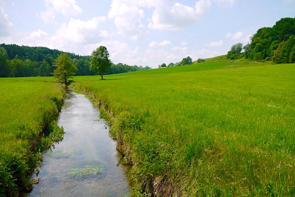 Wiesengänger Etappe 03 - Bachlauf und weite Wiesen - Wandertrilogie Allgäu - Bayern