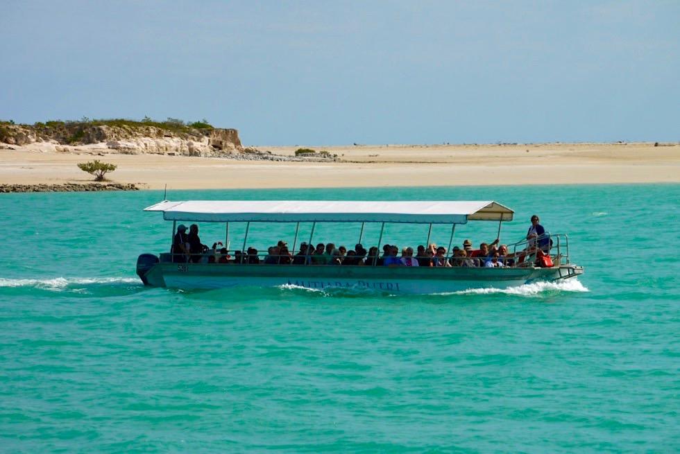 Willie Creek Pearl Farm - Bootstour zu den Muschelbänken - Kimberley - Western Australia