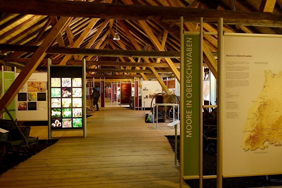 Bad Wurzach - Sehenswert: Torfmuseum Wurzacher Ried - Hochmoor - Baden-Württemberg