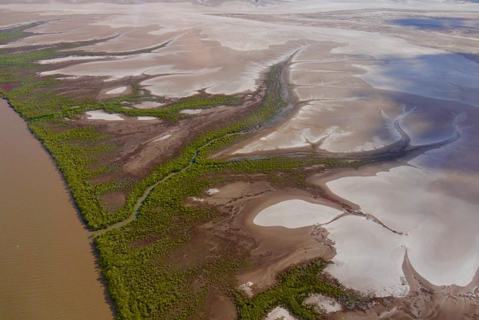 Cambridge Gulf - Mangroven Wälder entlang der Wasser-Adern - Wyndham - Western Australia