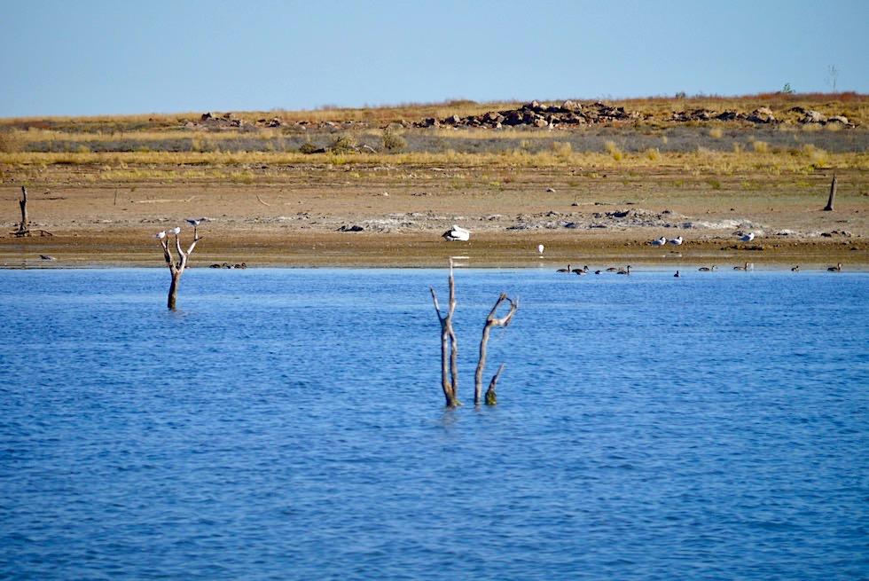 Lake Argyle - Vogel-Inseln - Kimberley - Western Australia