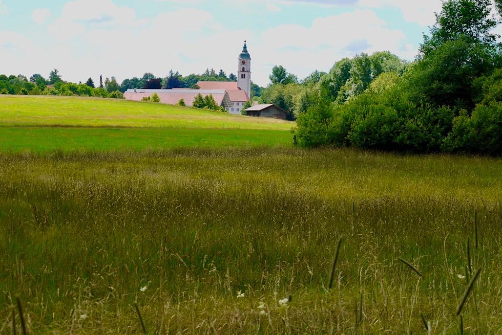 Wurzacher Ried - Streuwiesen bei Bad Wurzach - Randgebiete des Hochmoors - Baden-Württemberg