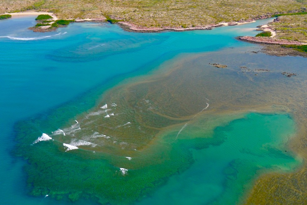 Timor See - Traumhaft schöne Saum-Riffe & leuchtende Farben - Kimberley Outback - Western Australia