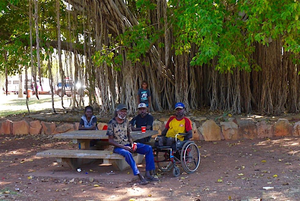 Gespräch mit einer Aboriginal Gruppe & riesiger Feigenbaum - Mataranka - Northern Territory