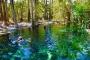 Bitter Springs, Mataranka Rainbow Spring, Katherine Hot Springs – Kristallklare & erfrischende Quellen!