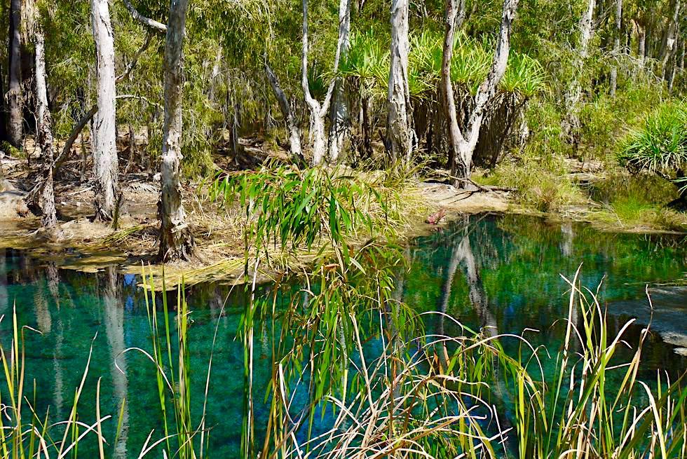 Bitter Springs Lookout - Herrlicher Ausblick auf Little Roper River - Elsey National Park - Mataranka, Northern Territory