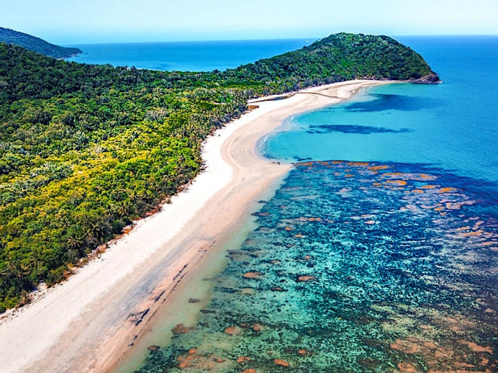 Cape Tribulation & Daintree Rainforest: Wo sich Regenwald und Great Barrier Reef treffen - Wet Tropics of Queensland