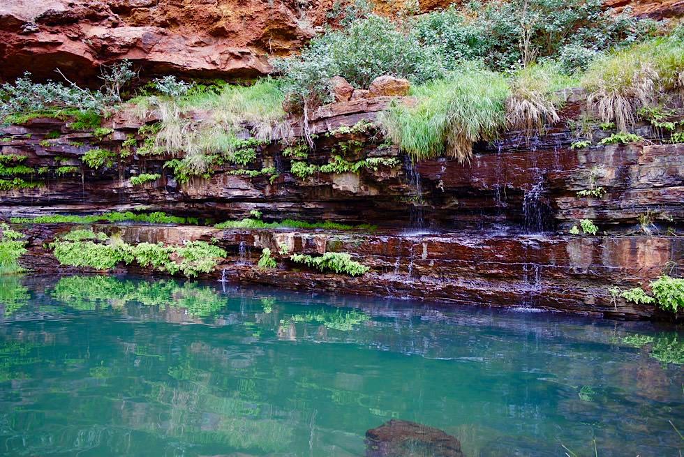 Circular Pool - Badespaß im Karijini National Park & Ende der Dales Gorge Wanderung - Pilbara, Western Australia