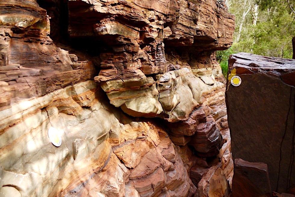Dales Gorge Trail - Lustige Hindernisse zum Übersteigen - Karijini National Park, Pilbara - Western Australia