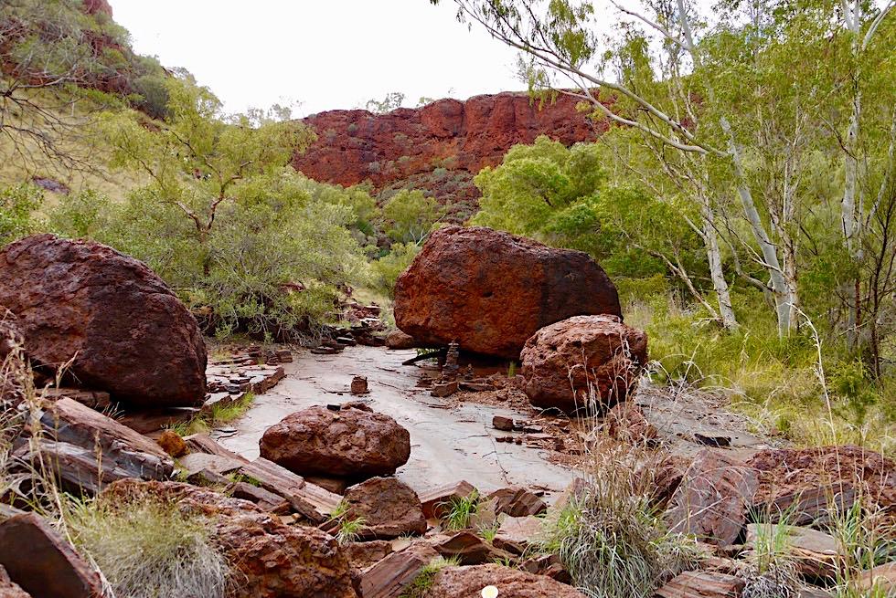 Dales Gorge Wanderung - Abstieg zum Circular Pool - Karijini National Park - Pilbara, Western Australia