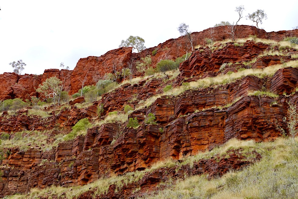 Dales Gorge Wanderung: Geschichtete Felsen & Struktur - Karijini National Park Ostteil - Pilbara, Western Australia