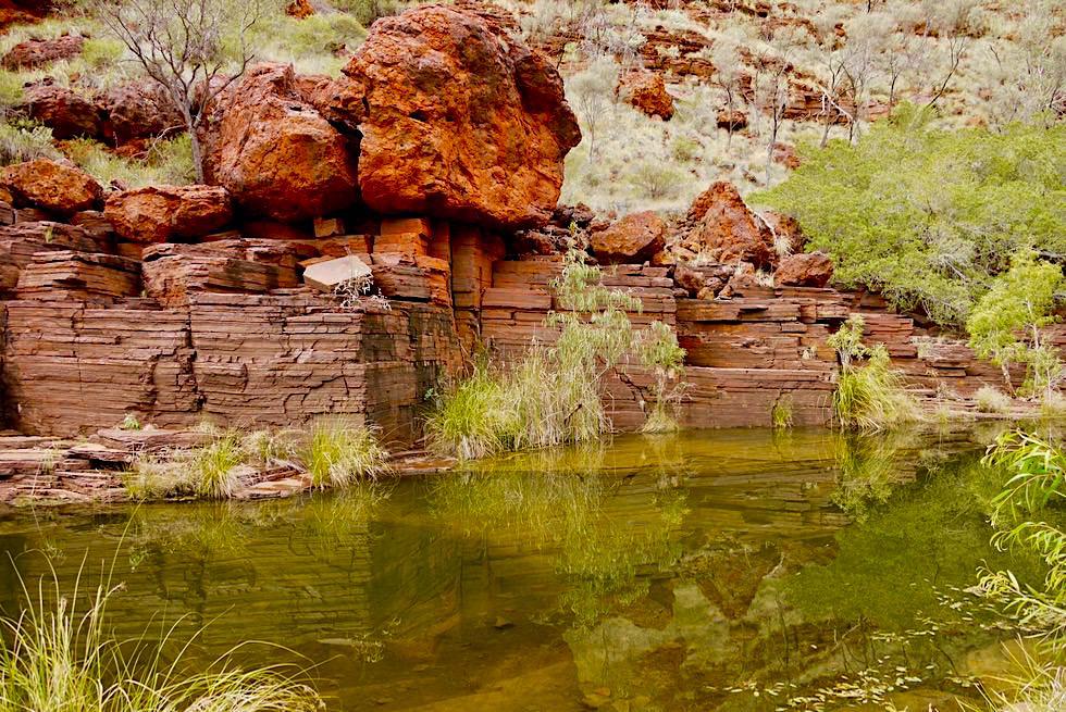 Dales Gorge Wanderung - Wasserspiegelungen - Karijini National Park - Pilbara, Western Australia