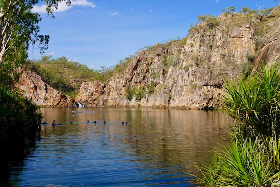 Edith Falls - Ausblick auf den großen Main Pool & seinen kleinen Wasserfall - Nitmiluk National Park - Northern Territory