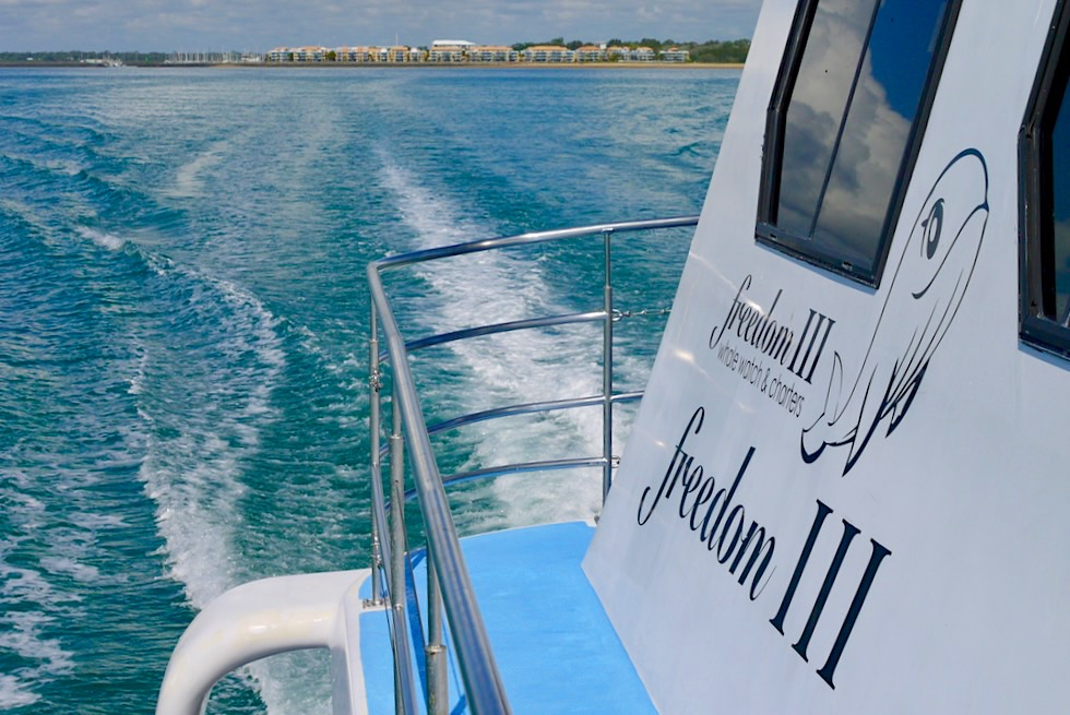 Freedom III - Hervey Bay Walbeobachtung mit Freedom Whale Watch - Queensland