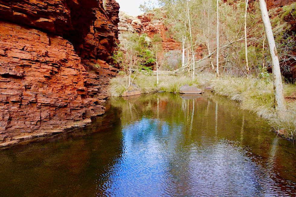 Weano Gorge: Handrail Pool - Wasserlöcher auf dem Weg zum Pool - Karijini National Park, Pilbara - Western Australia