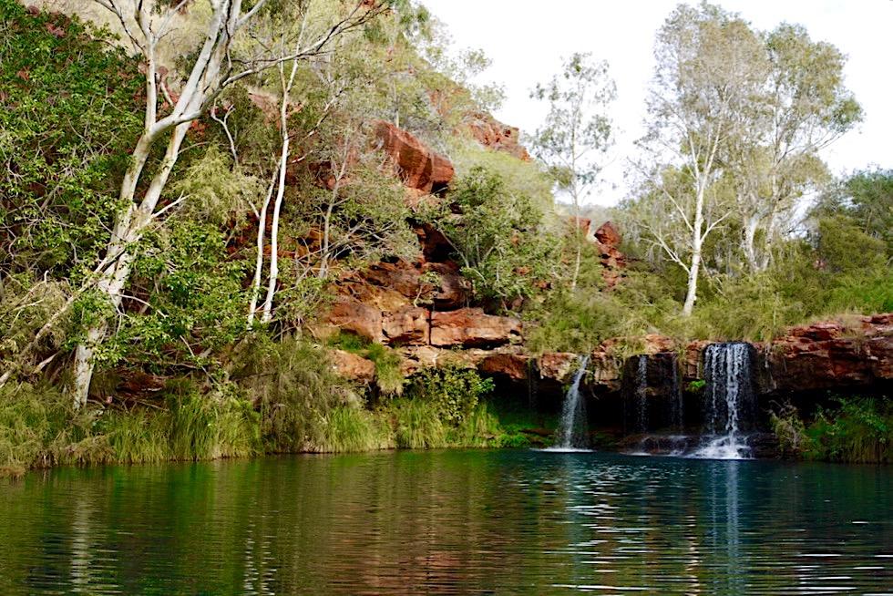 Karijini National Park - Ausblick auf Fern Pool - Pilbara - Western Australia