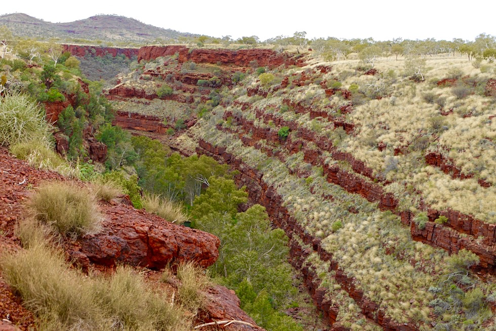 Karijini National Park - Dales Gorge: Ausblick auf den Scluchtenverlauf - Pilbara - Western Australia