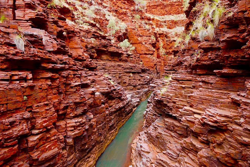 Karijini National Park - Hancock Gorge: ab jetzt beginnt der spannende Teil mit ersten Kletterpassagen - Pilbara - Western Australia
