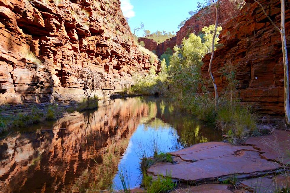 Karijini National Park - Hancock Gorge & Wasserspiegelungen - Pilbara - Western Australia