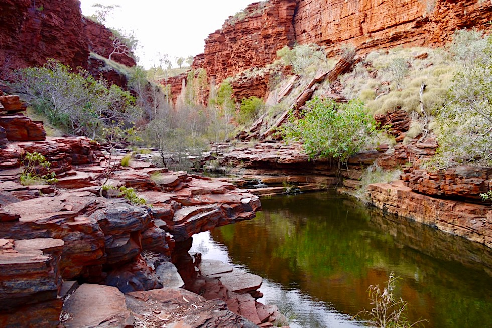 Karijini National Park - Weano Gorge: Wasserlöcher & Spiegelungen - Pilbara - Western Australia