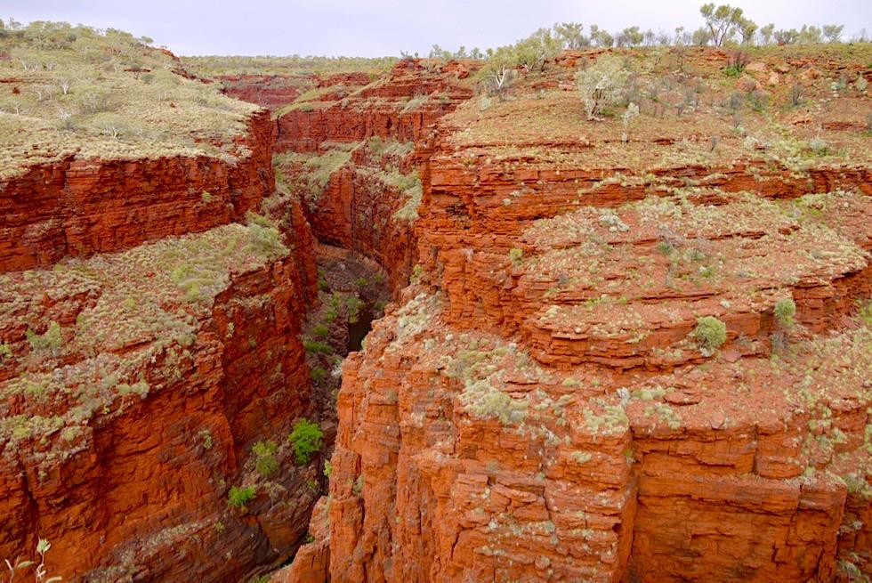 Karijini National Park - Atemberaubende Ausblicke vom Oxer Lookout auf tiefe rote Schluchten - Pilbara - Western Australia