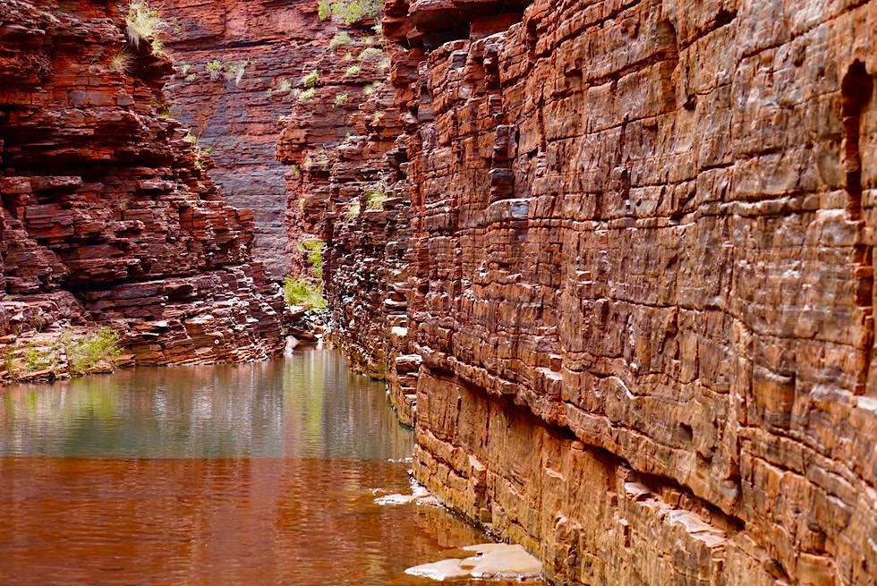 Karijini National Park - Felsklettereien Hancock Gorge - Pilbara - Western Australia