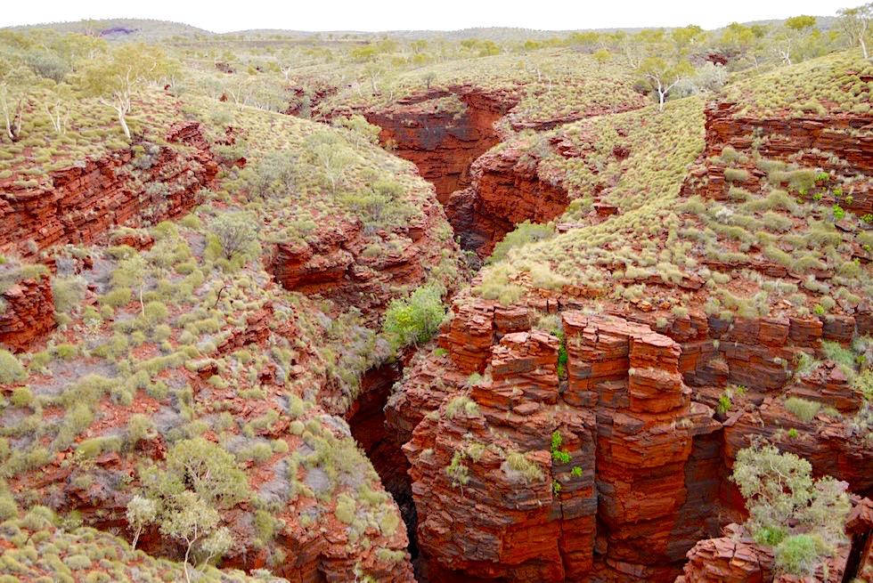 Karijini National Park - Faszinierende Ausblicke: Oxer Lookout auf Hamersley Range - Pilbara - Western Australia