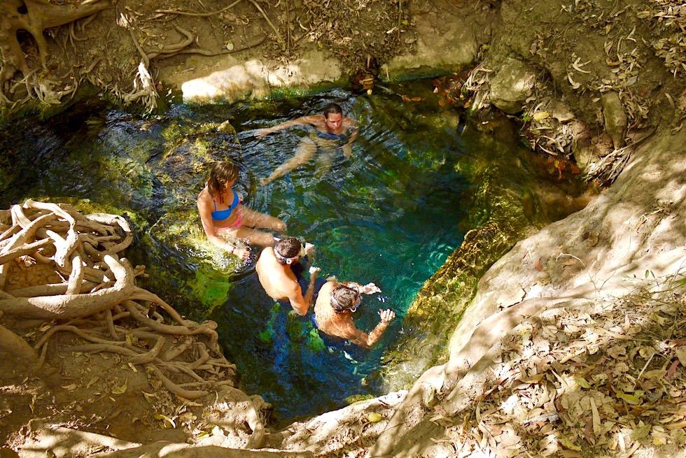 Katherine Hot Springs - Obere Quelle mit warmen Wasser - Thermalquellen in Northern Territory