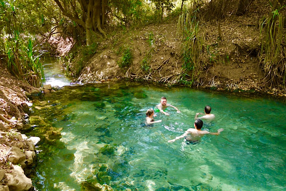 Highlight in Katherine - Erfrischend, warme Hot Springs! - Northern Territory