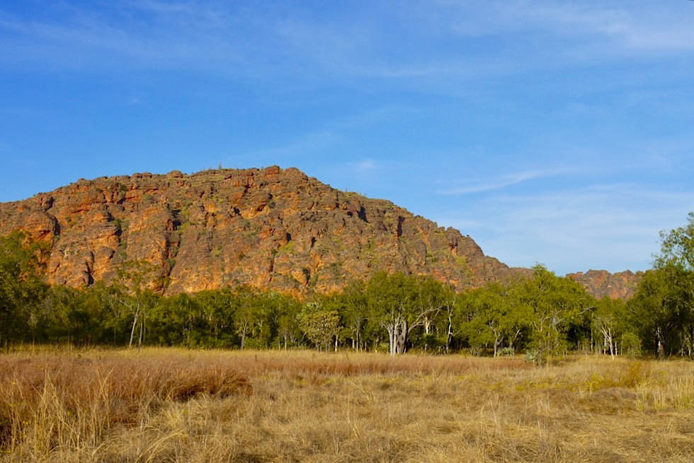 Keep River National Park - Jarnem Walk: Bungle Bungles Felsstrukturen - Northern Territory