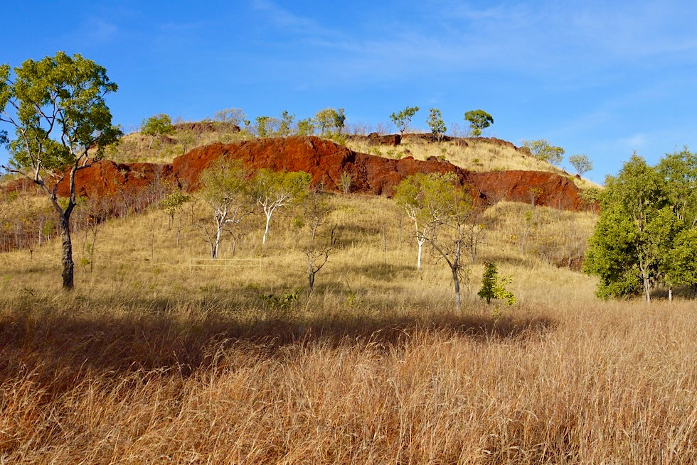 Keep River National Park - Jarnem Loop Walk: Ebene mit rotem Felsband - Northern Territory