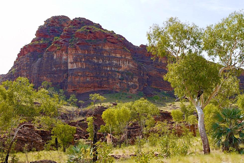 Keep River National Park - Eine faszinierende Wanderung durch bunte Felsen & beeindruckende Flora - Top End, Northern Territory